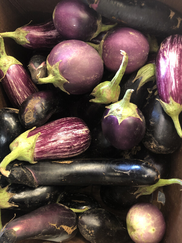 Eggplant, by the pound