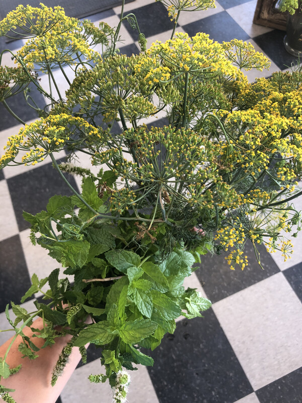 Fresh Cut Herbs, Bundled