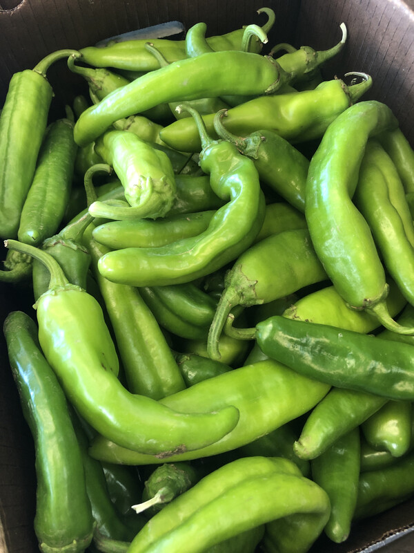 Hot Chiles, by the pound