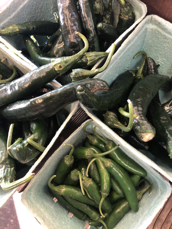 Hot Peppers, by the pound