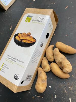 Organic Seed Potatoes 'Russian Banana'