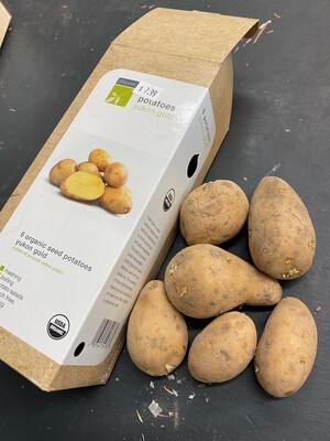Organic Seed Potatoes 'Yukon Gold'