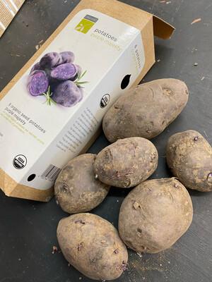 Organic Seed Potatoes 'Purple Majesty'