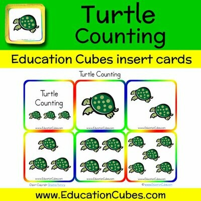 Turtle Counting