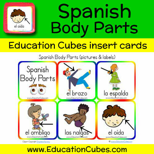 Spanish Body Parts (pictures)