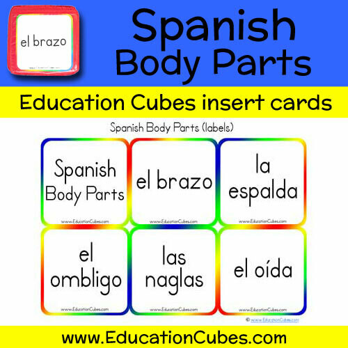 Spanish Body Parts (labels)