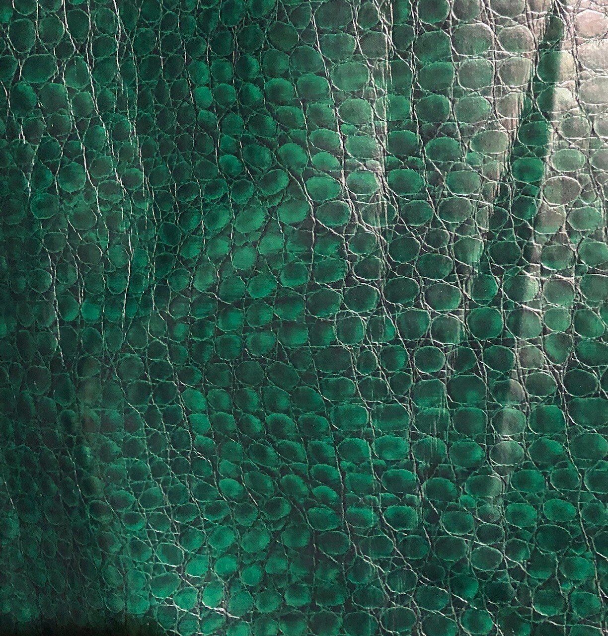 Bottle Green Croc Vinyl