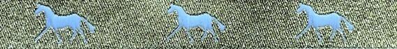 Horse Binding- Gold/White Horse