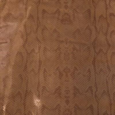 Tan Snake  Print