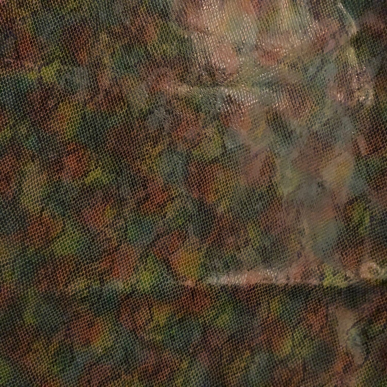 Rainbow Serpent Print