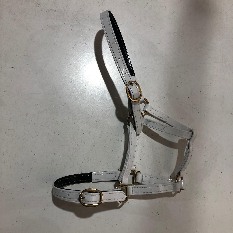 "PVC Halter Pony 3/4"" brass buckles"