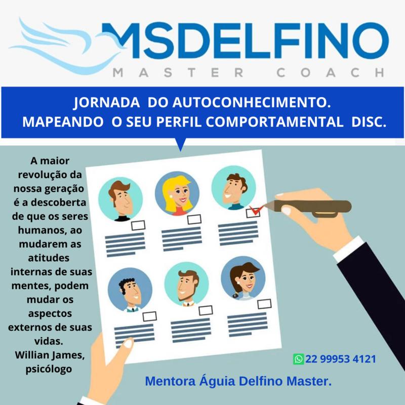 Mentoria Liderança + Análise de Mapeamento do Perfil Comportamental DISC com FEEDBACKS + Devolutiva Online .
