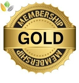 TransPerfect Club - Gold