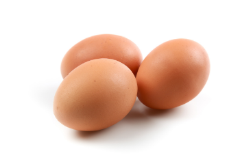 Eieren BIO 6 stuks
