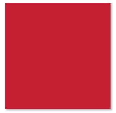20pk Red Napkins
