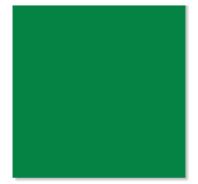 20pk Green Napkins