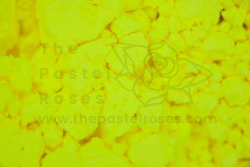 Neon Loose Pigment - Miami Sun - 1g