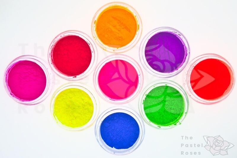 Large Neon Loose Pigment Bundle