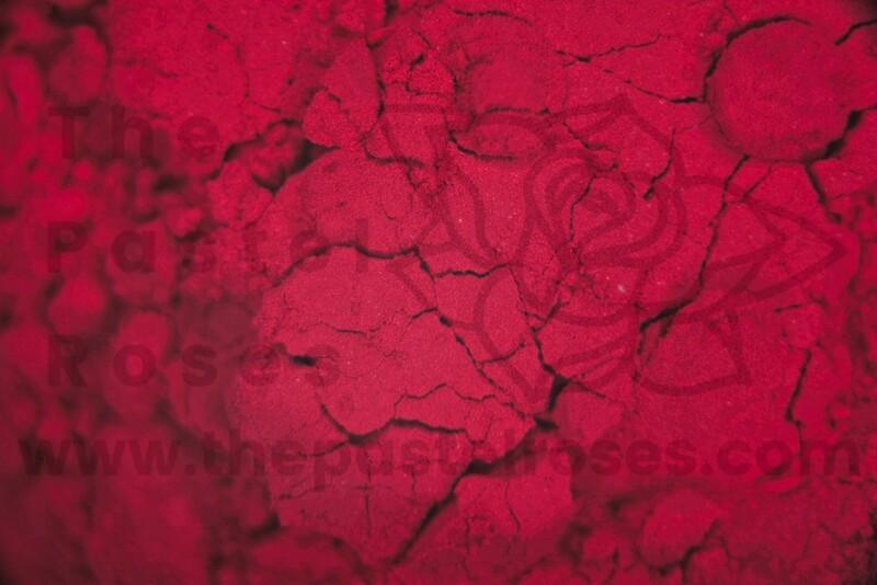 Neon Loose Pigment - Scarlett - 1g