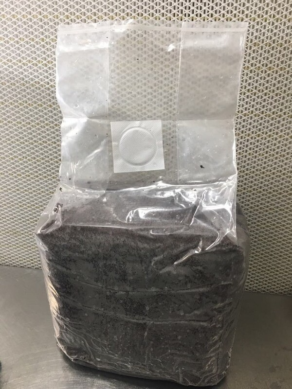 6 Pounds Pasteurized Bulk Substrate Bag