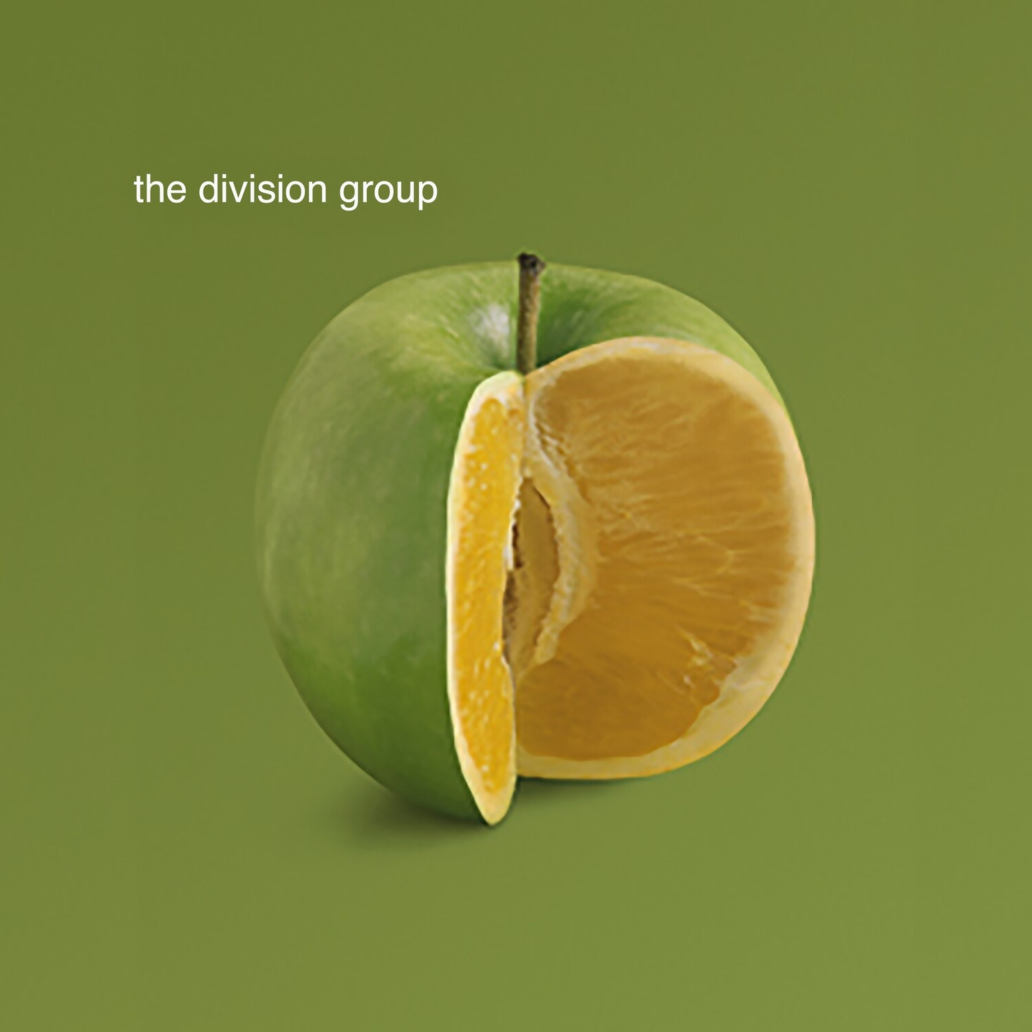 "The Division Group - ""Self Titled"" CD"