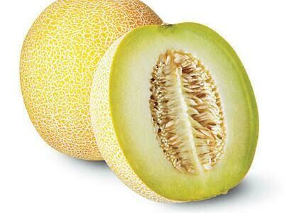 Cantaloupe Melon each