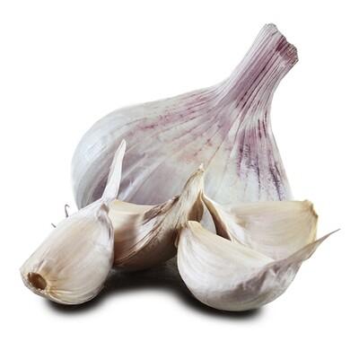 Iberian Wight Garlic Bulb