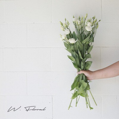 Bunch of Lisianthus - White