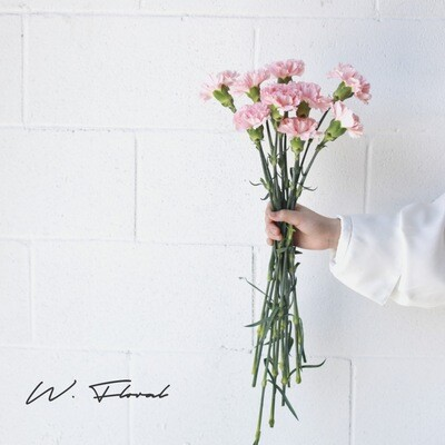 Bunch of Carnation - Pink