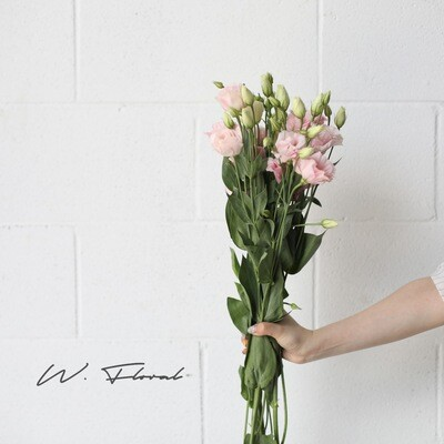 Bunch of Lisianthus - Light Pink