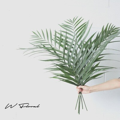 Bunch of Palm