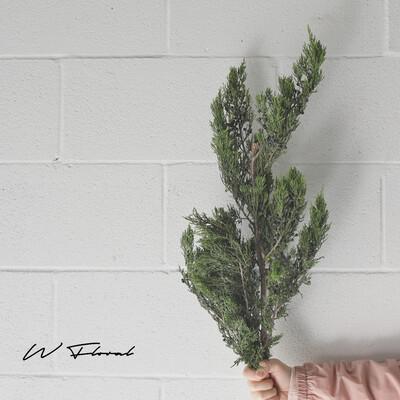 Bunch of Christmas Green - Cedar Blueberry