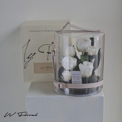 Crystal Preserved Roses Cannes - White