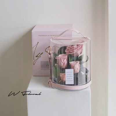 Crystal Preserved Roses Cannes - Dusty Pink