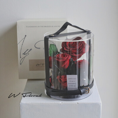Crystal Preserved Roses Cannes - Red