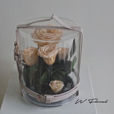 Crystal Preserved Roses Cannes - Champagne