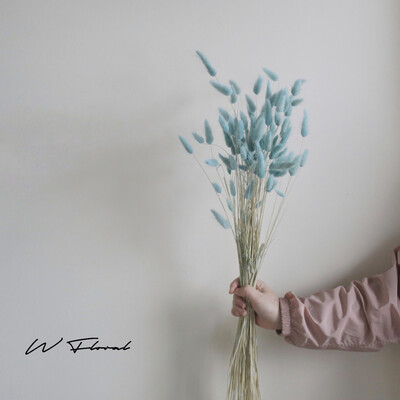 Dried Bunny Tail Bunch - Baby Blue