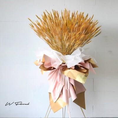 Everlasting Golden Barley Standing Lush