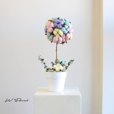 Preserved Dried Cotton Flower Topiary