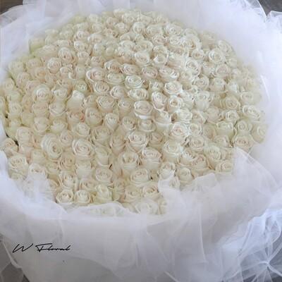 White Chiffon White Roses
