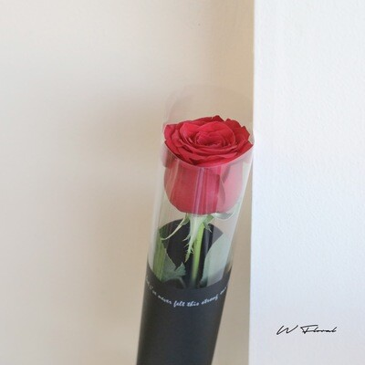 One and Only Rose Bouquet