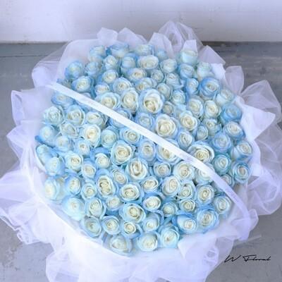 Chiffon Starry Roses