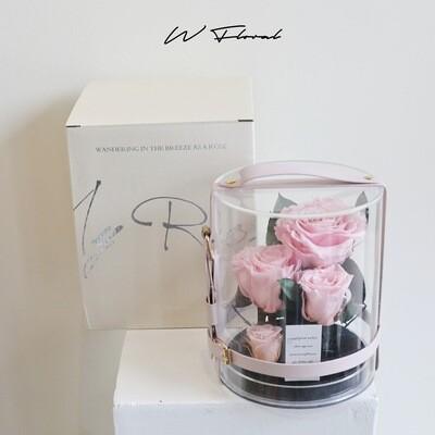 Crystal Preserved Roses Cannes - Light Pink