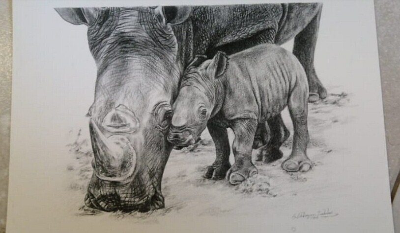 Rhino 03