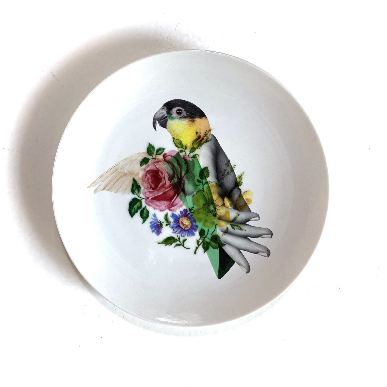 bird | bord