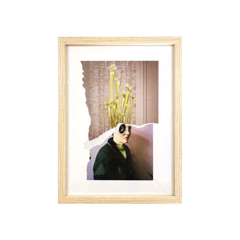 plant lady   original collage