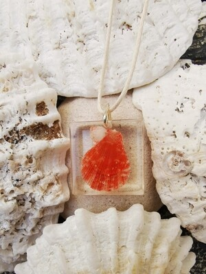 Bright Orange Shell Necklace