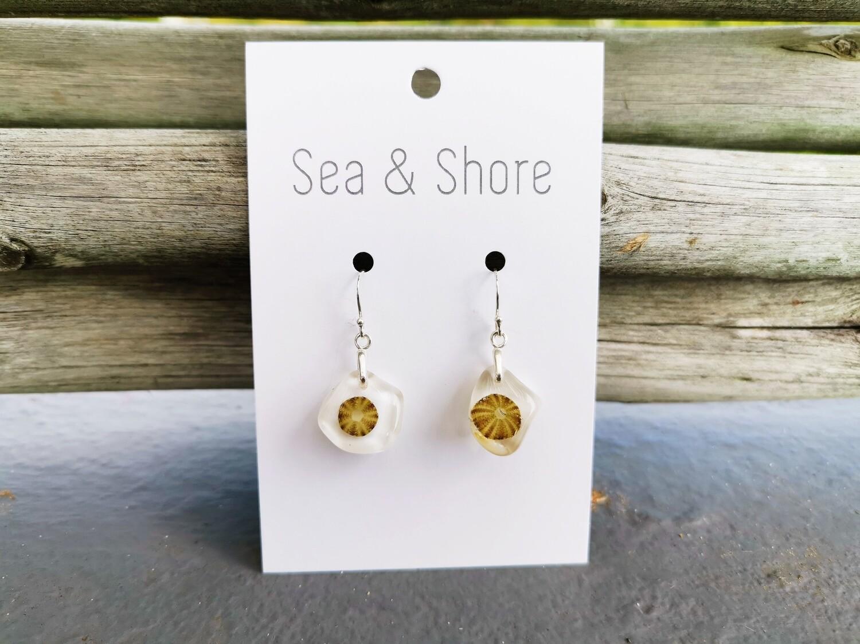 Miniature Sea Urchin Earrings