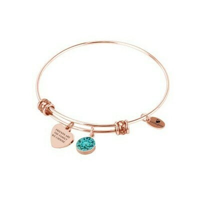 Natalie Gersa Steel Bangle Friends Are The Family We Choose with Turkiz Swarovski