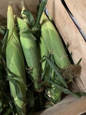 1 dozen corn add to standard box only